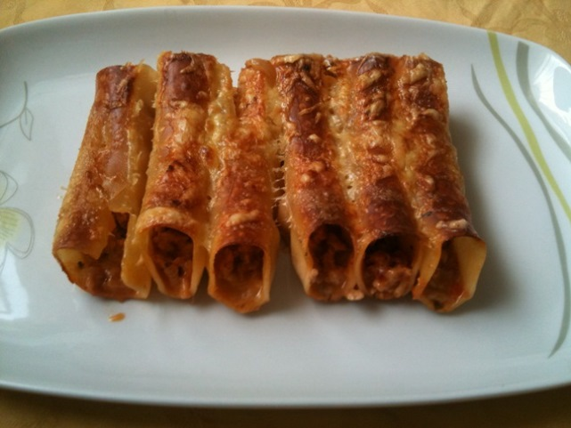 Cannelloni sa puretinom