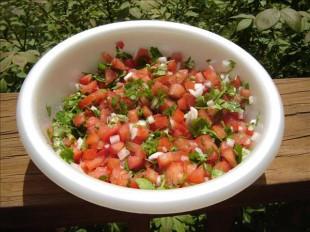 meksicka-svjeza-salsa1